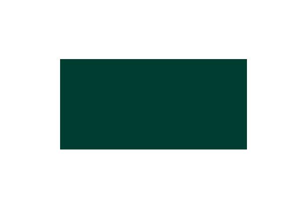 logo de la française de sécurité png